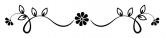 noun_divider_2142034