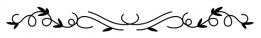 noun_divider_2142138
